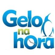 Logomarca Gelo na Hora
