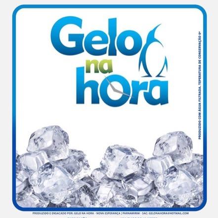 10 Pacotes de Gelo em Cubo